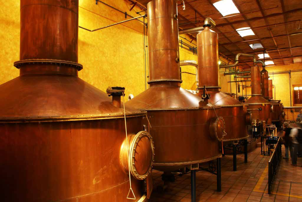 Tequila Stills at Cuervo Plant in Tequila, Jalisco