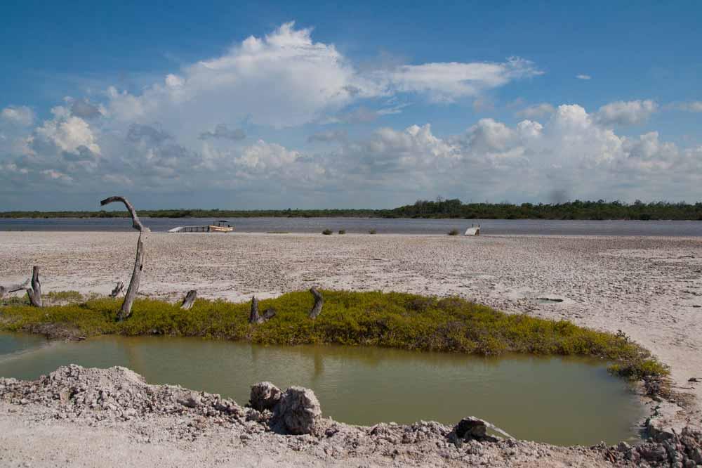 El Cuyo Yucatan, Ria Lagartos