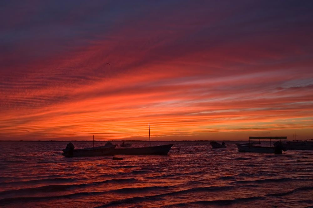 Altata after sunset Sinaloa