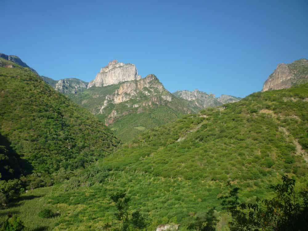 Sinaloan Mountains