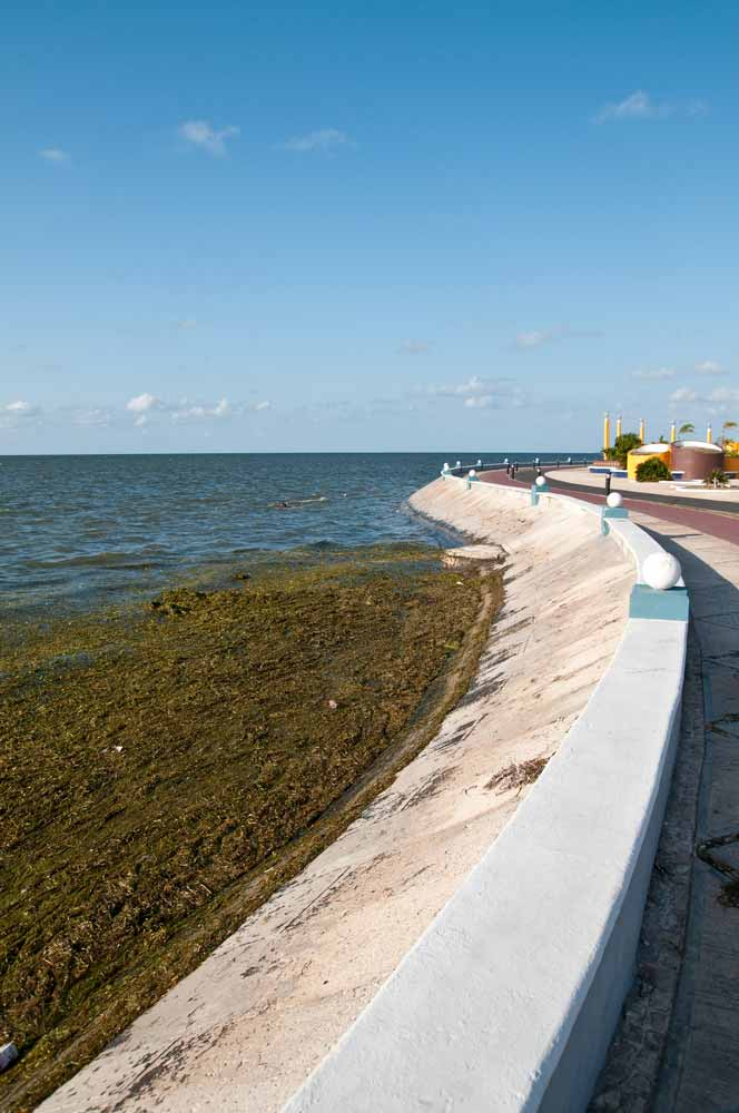 Sea front of Campeche Mexico