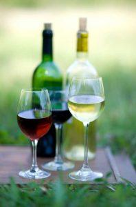 Baja Wine Tasting