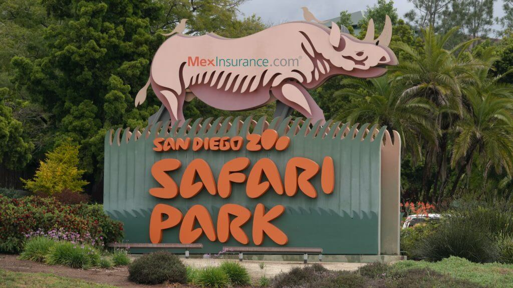 Safari Park in Escondido California