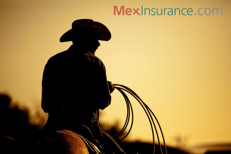 Lakeside cowboy