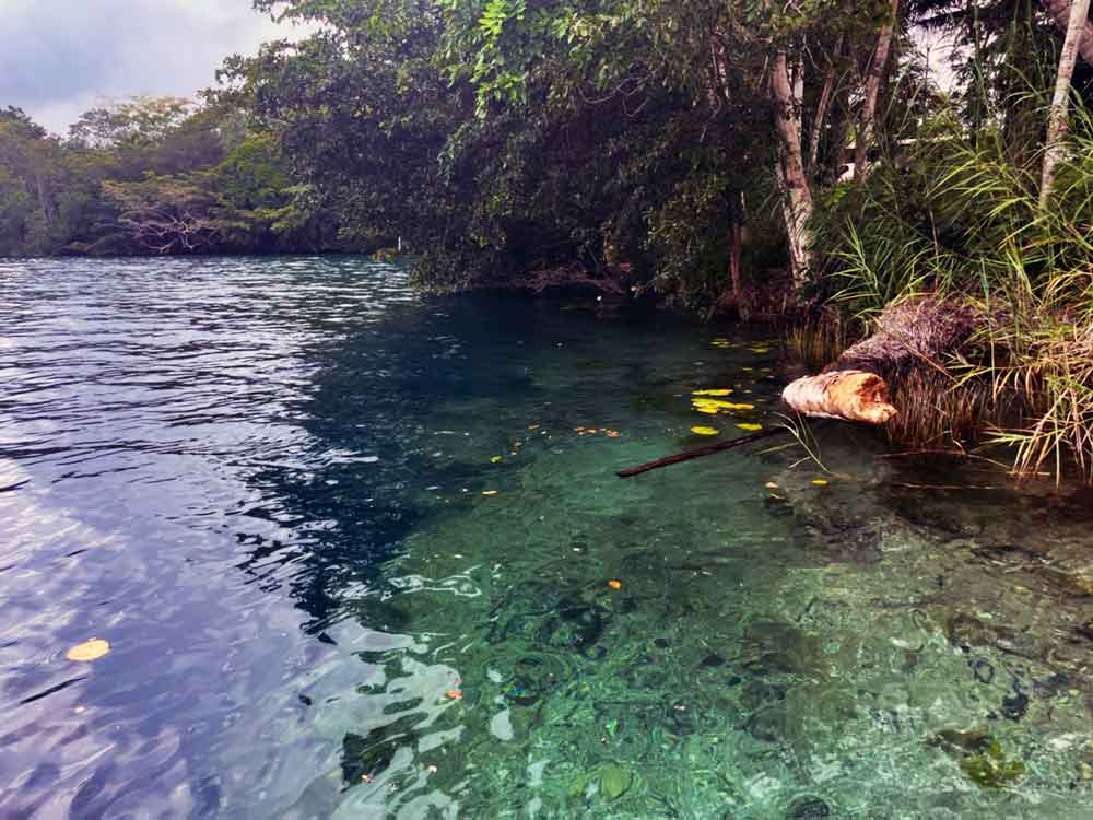 Bacalar-Cenote Negro