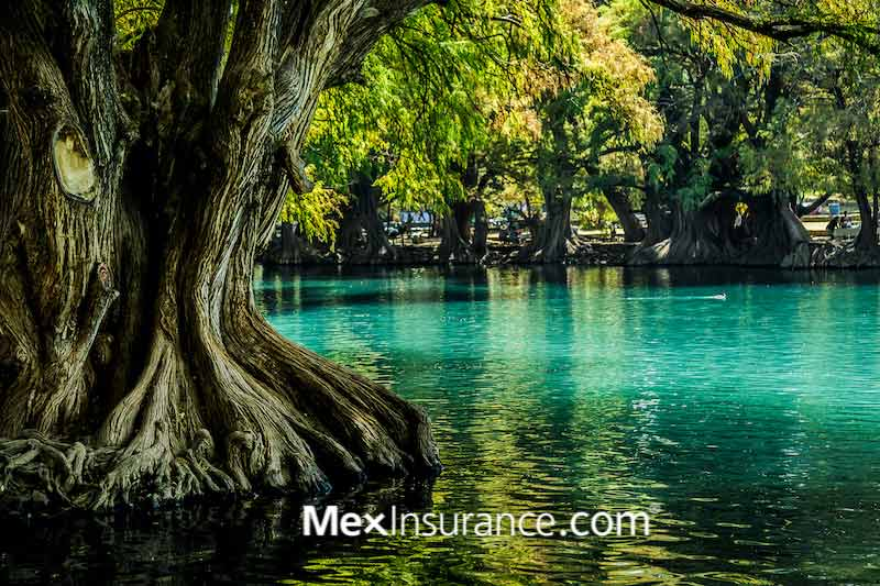 Camecuaro (lago) Zamora de Hidalgo Michoacán