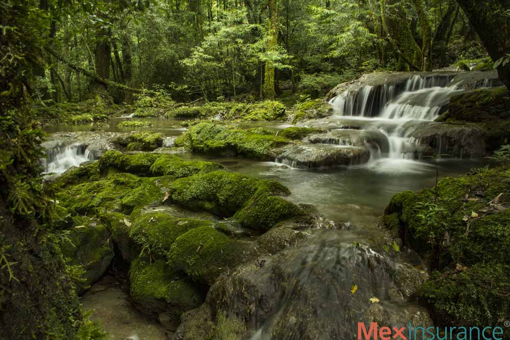 Cascada Biosphere Reserve