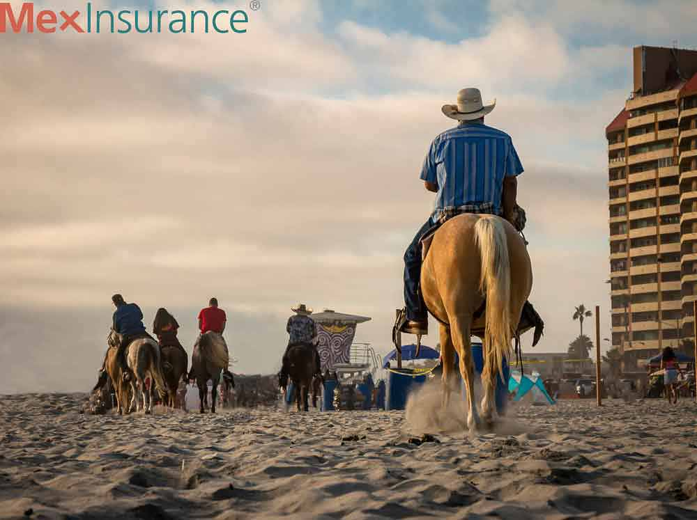 Horseback Rides on the Beach of Rosarito