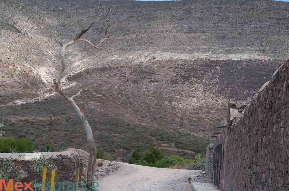real de catorce road with wall
