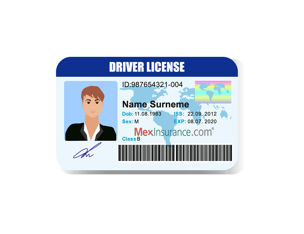 Terms and Conditions Drivers License Insurance Chubb